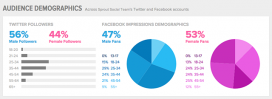 Statistical data on followers on the social media / Image: sproutsocial.com