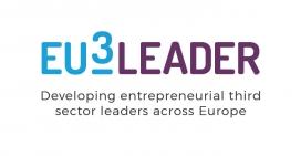 Eu3leader's trademark.