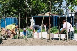Gardening project in Northfleet Big Local, Kent / Photograph: Local Trust
