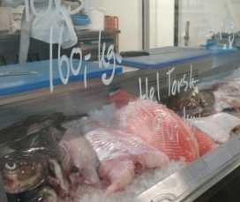 Fresh fish from our Members of Thorupstrand sold in Copenhagen (Denmark) / Photograph: LIFE