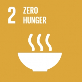 Zero Hunger image. Image: World's Largest Lesson