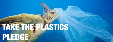 Turtle tangled in a plastic bag. Green Peace.