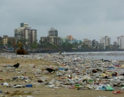 Mumbai beach covered in plastic waste