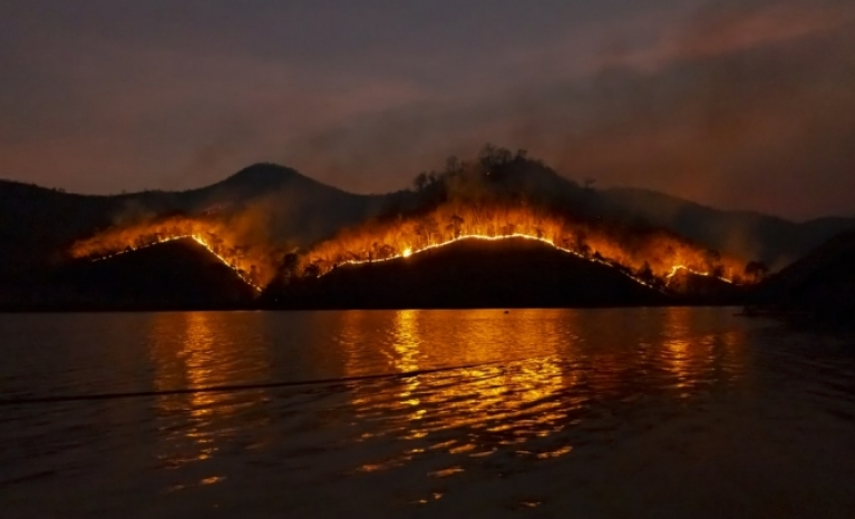In recent months more than 10 million hectares have burnt and 28 people have lost their lives.