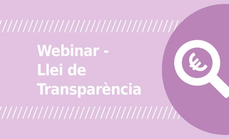 Image from a Xarxanet webinar. Photo: Associació per a Joves TEB