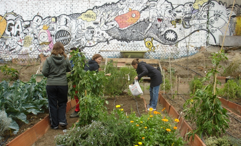"Community garden in Madrid / Photograph: Huerta Agroecológica Comunitaria ""Cantarranas"", Flickr"