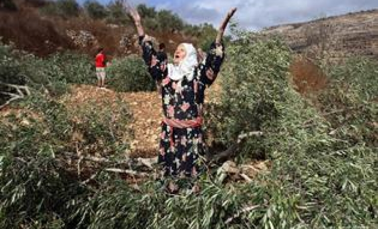 Palestinian woman cries after Israeli soldiers destroyed her land