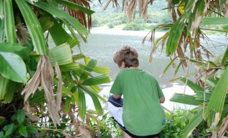 Children & Nature.