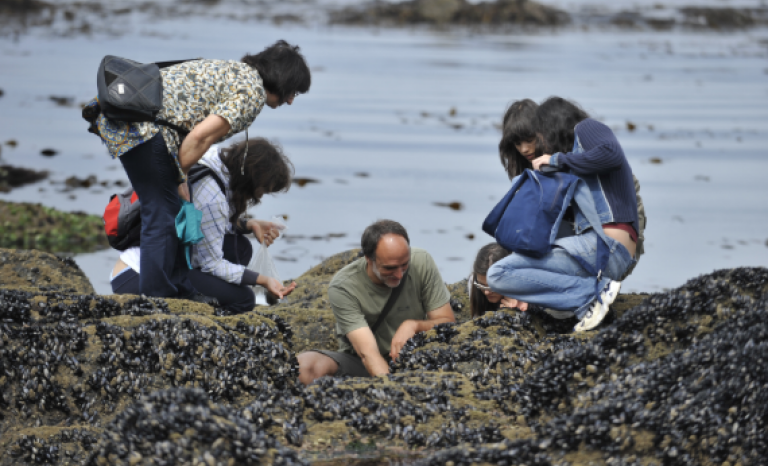 School of Nature brings local community closer to their unique natural heritage.  Source: CMIA Viana do Castelo