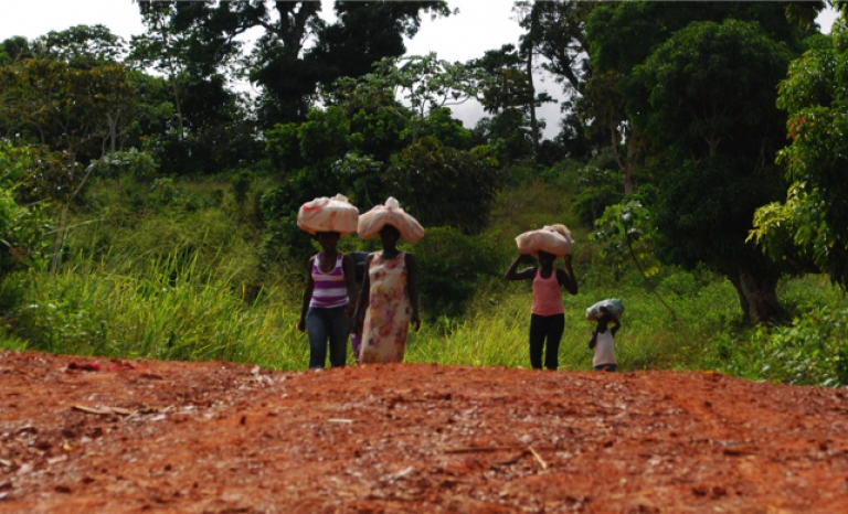 People plant cassava, one of the main sources of food in the country.