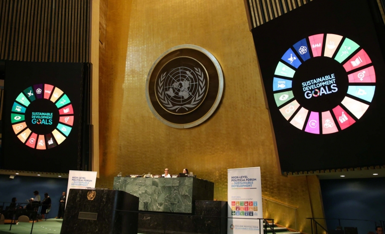 New York hosted a Side-Event to the UN High-Level Political Forum on Sustainable Development (HLPF) to discuss how addressing the challenges faced by this group of people.
