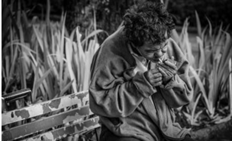 Human suffering is unacceptable in the Venus Project. Photo: Pexels