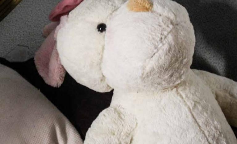 Teddy bear. Photo: Save the Children