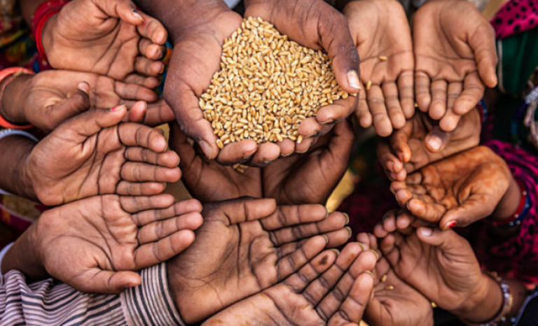 In 2019 it helped fight hunger to 100 million people in 88 countries.